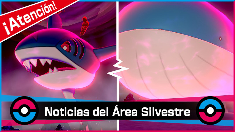 Nuevo evento de incursiones Dinamax con Wailord variocolor en Pokémon Espada y Pokémon Escudo