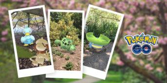 Celebración de New Pokémon Snap en Pokémon GO
