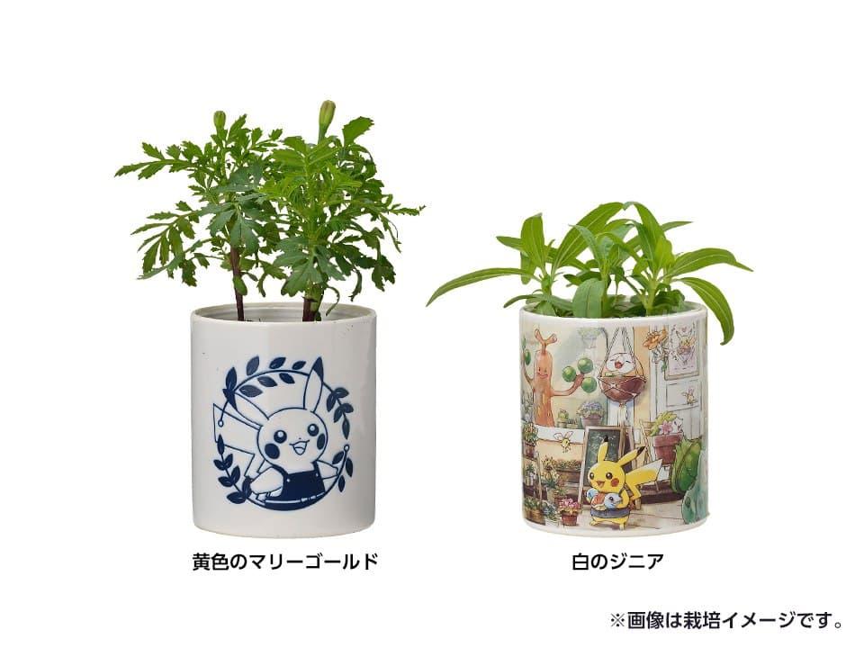 Macetas con diseños de Pikachu y de la colección